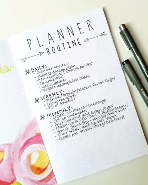 Janet Perafan-Babar | Cocoa Daisy June 2017 Planner Routine