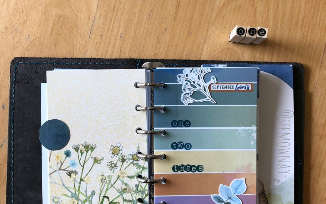 Setting up my pocket ring planner with Cocoa Daisy