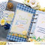Lemon Grove Plan with Me – Dashboards & Video