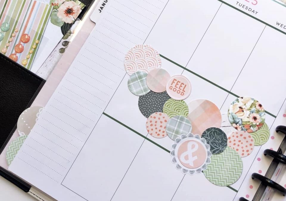 Focus on Circles with Orchard Path