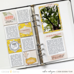 Field Notes with Serengeti