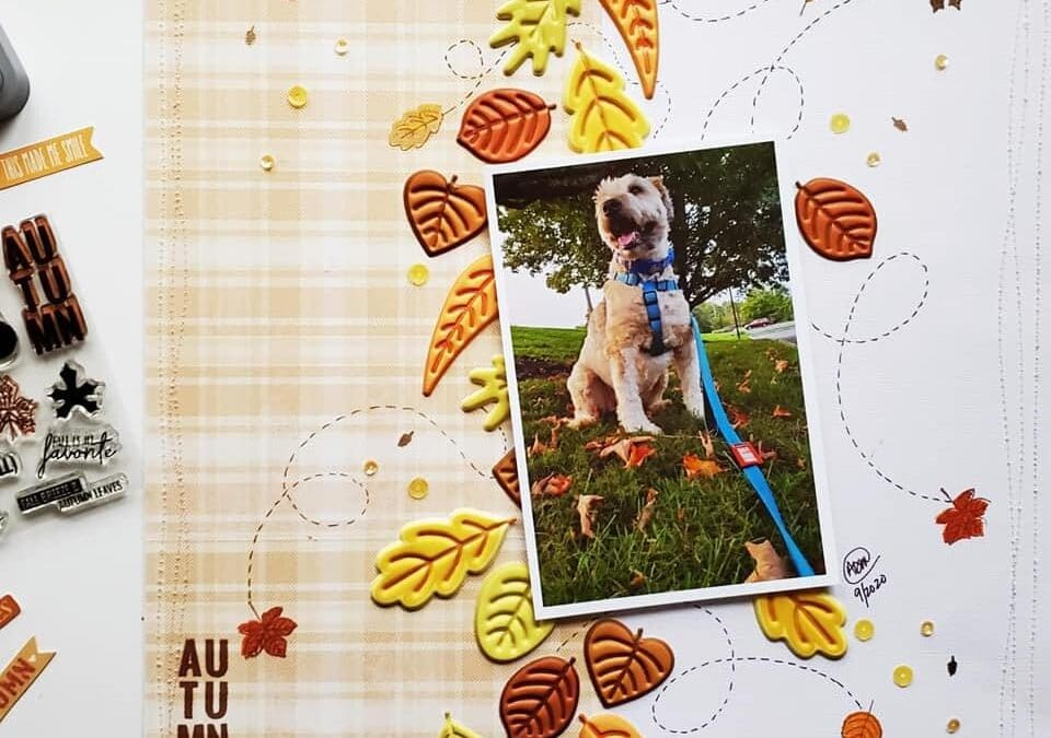 Ideas for Using the Autumn Leaf as a Banner or Border in Your Layouts