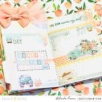 Weekly Planning with the Peach Ridge Collection
